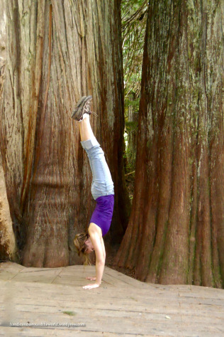 Handstand at Grove of the Patriarchs - Mount Rainier National Park, WA (Photo credit: Mom)