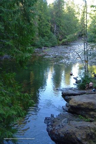 Englishman River - Englishman River Provincial Park, BC
