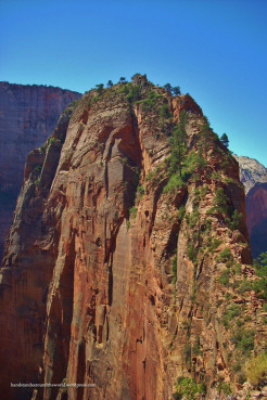 Angels Landing summit from Scout's Lookout