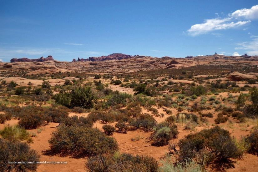 Petrified Dunes Vwpt