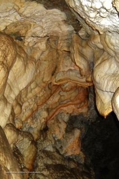 Cave bacon
