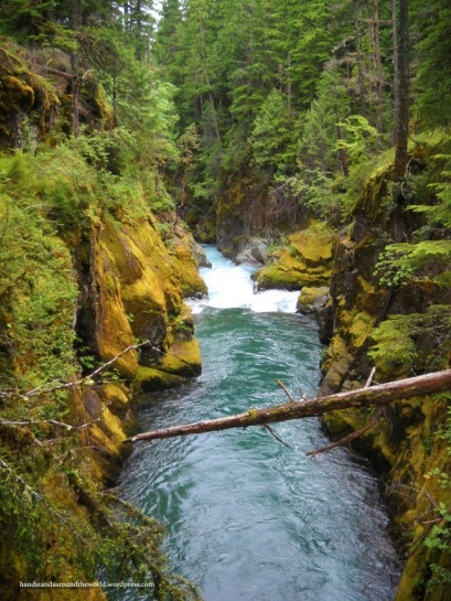 Ohanapecosh River - Mount Rainier National Park, WA