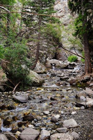 Zapata Creek - Sangre de Cristo Mountains, CO
