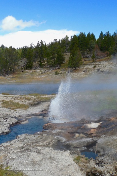 Young Hopeful Geyser