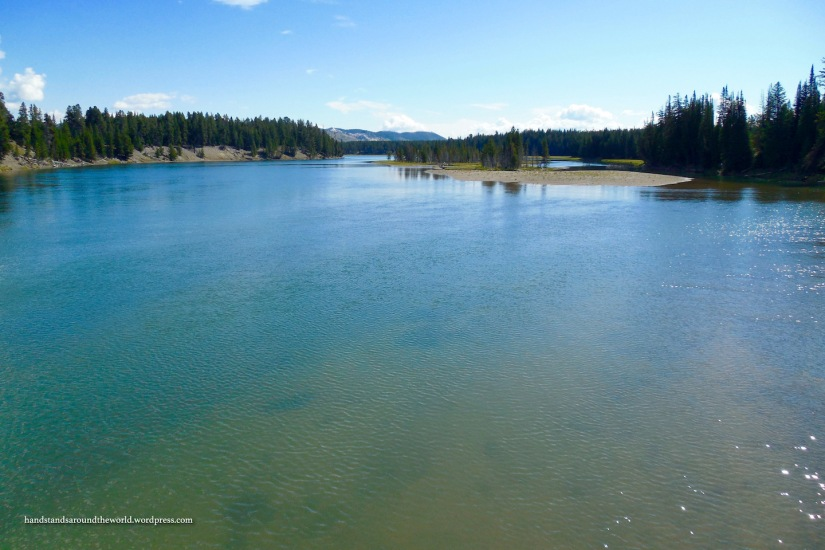 Yellowstone River from Fishing Bridge